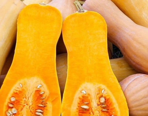 All About: Butternut Squash