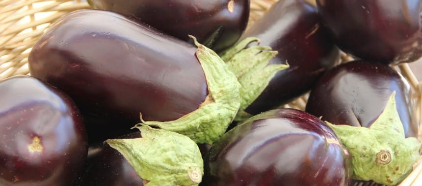 All About: Eggplant